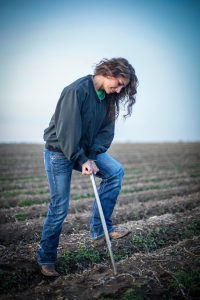 Tayler McLane, precision agronomist for MFA Agri Services in Bernie, Missouri, pulling a soil sample.