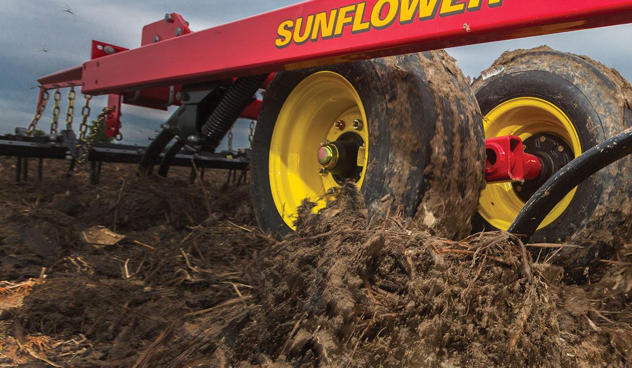 Sunflower field cultivators