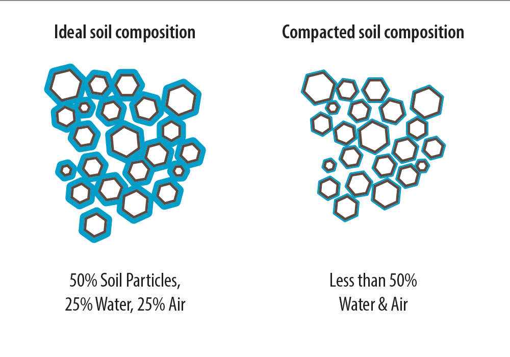 Composition of ideal and compacted soil
